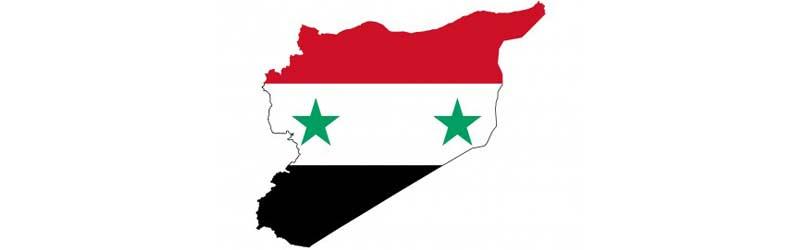 Umriss mit Flagge von Syrien